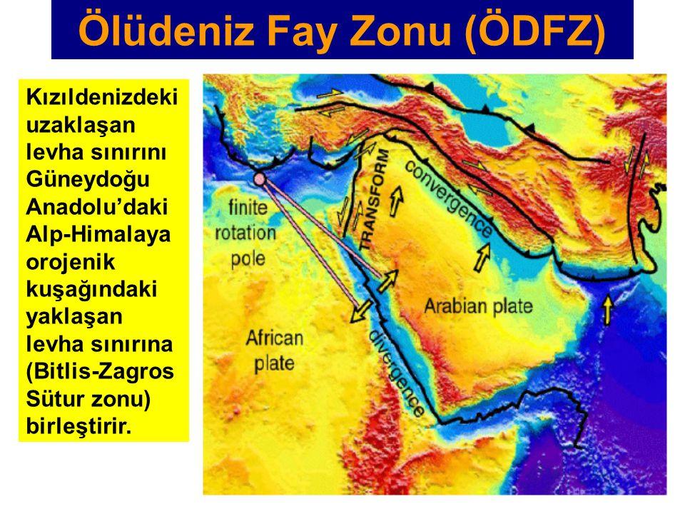 Kızıldenizdeki uzaklaşan levha sınırını Güneydoğu Anadolu'daki Alp-Himalaya orojenik kuşağındaki yaklaşan levha sınırına (Bitlis-Zagros Sütur zonu) bi