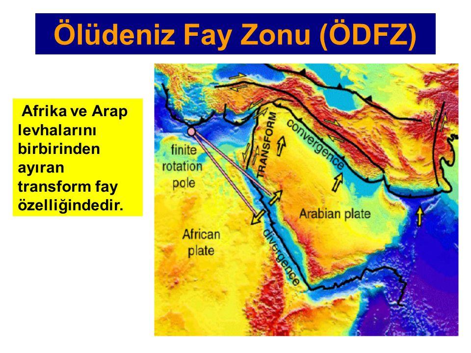 Afrika ve Arap levhalarını birbirinden ayıran transform fay özelliğindedir. Ölüdeniz Fay Zonu (ÖDFZ)