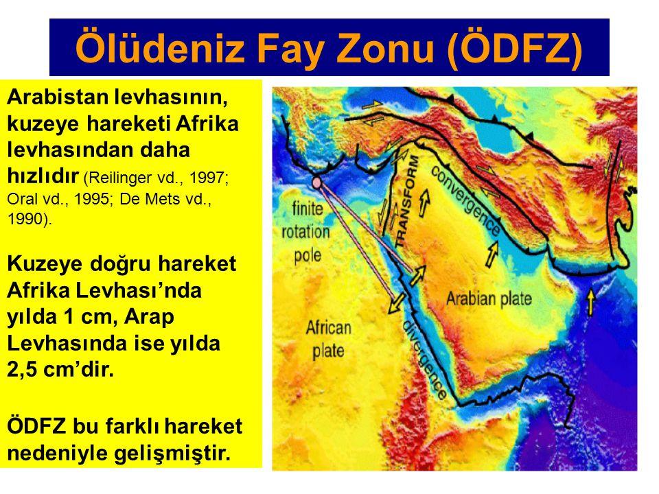 Arabistan levhasının, kuzeye hareketi Afrika levhasından daha hızlıdır (Reilinger vd., 1997; Oral vd., 1995; De Mets vd., 1990).