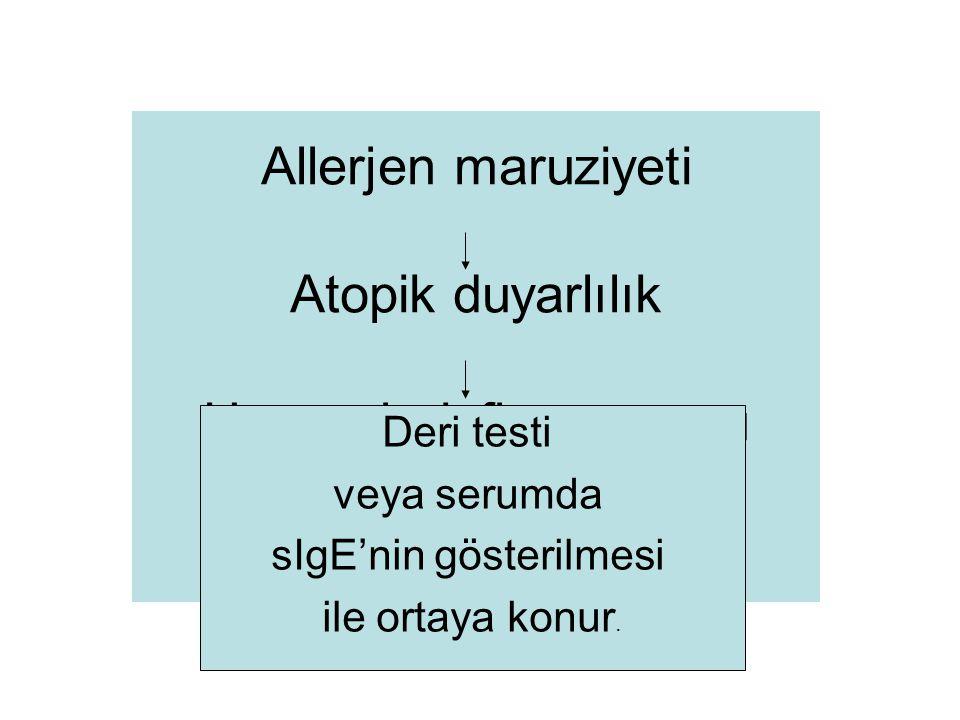 Allerjen maruziyeti Atopik duyarlılık Havayolu inflamasyonu Astım Deri testi veya serumda sIgE'nin gösterilmesi ile ortaya konur.