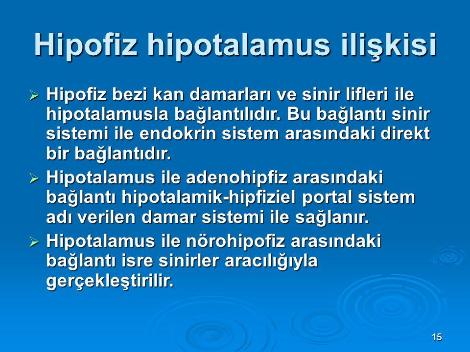 Hipofiz hipotalamus ilişkisi  Hipofiz bezi kan damarları ve sinir lifleri ile hipotalamusla bağlantılıdır. Bu bağlantı sinir sistemi ile endokrin sis