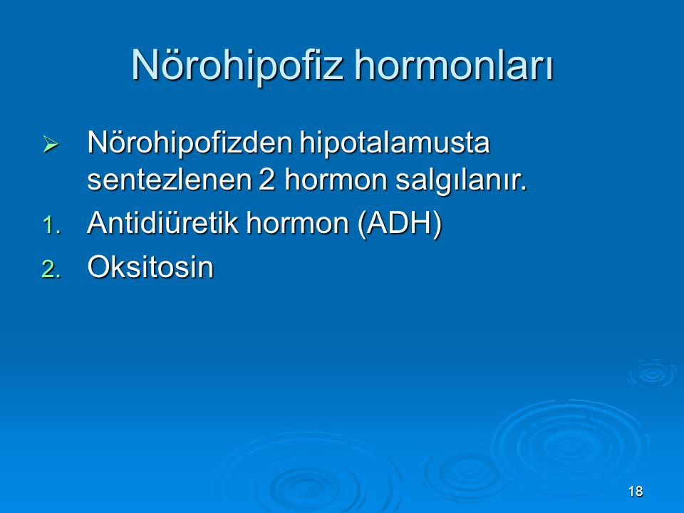 Nörohipofiz hormonları  Nörohipofizden hipotalamusta sentezlenen 2 hormon salgılanır. 1. Antidiüretik hormon (ADH) 2. Oksitosin 18