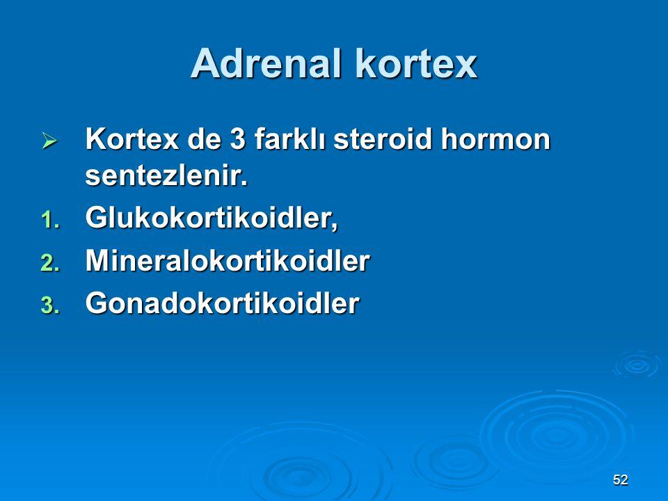 Adrenal kortex  Kortex de 3 farklı steroid hormon sentezlenir. 1. Glukokortikoidler, 2. Mineralokortikoidler 3. Gonadokortikoidler 52