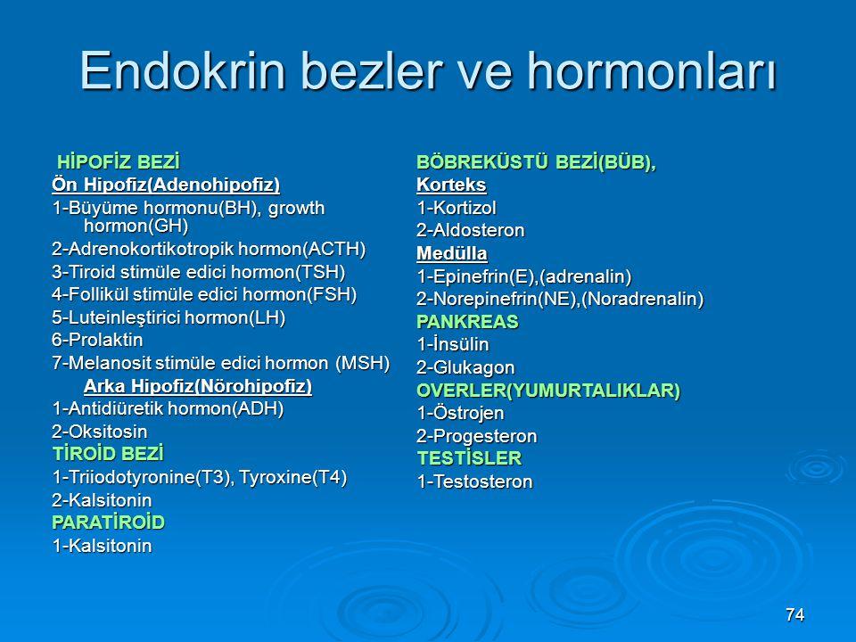 Endokrin bezler ve hormonları HİPOFİZ BEZİ HİPOFİZ BEZİ Ön Hipofiz(Adenohipofiz) 1-Büyüme hormonu(BH), growth hormon(GH) 2-Adrenokortikotropik hormon(