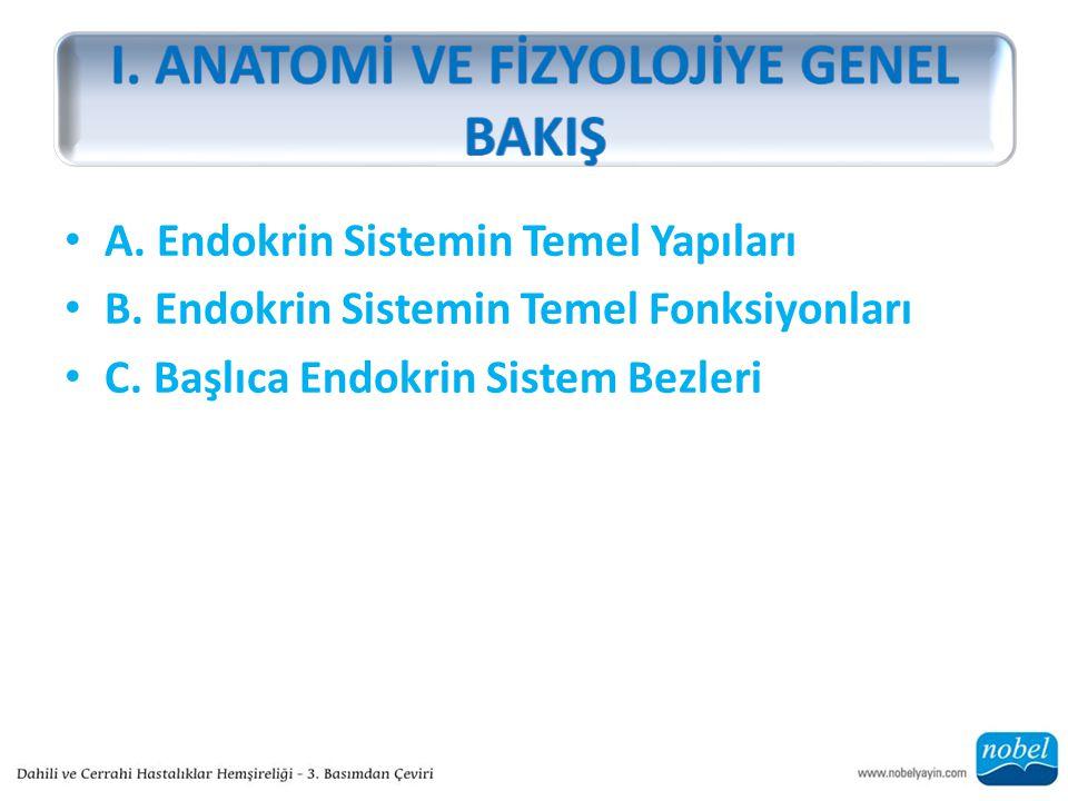 A. Endokrin Sistemin Temel Yapıları B. Endokrin Sistemin Temel Fonksiyonları C.