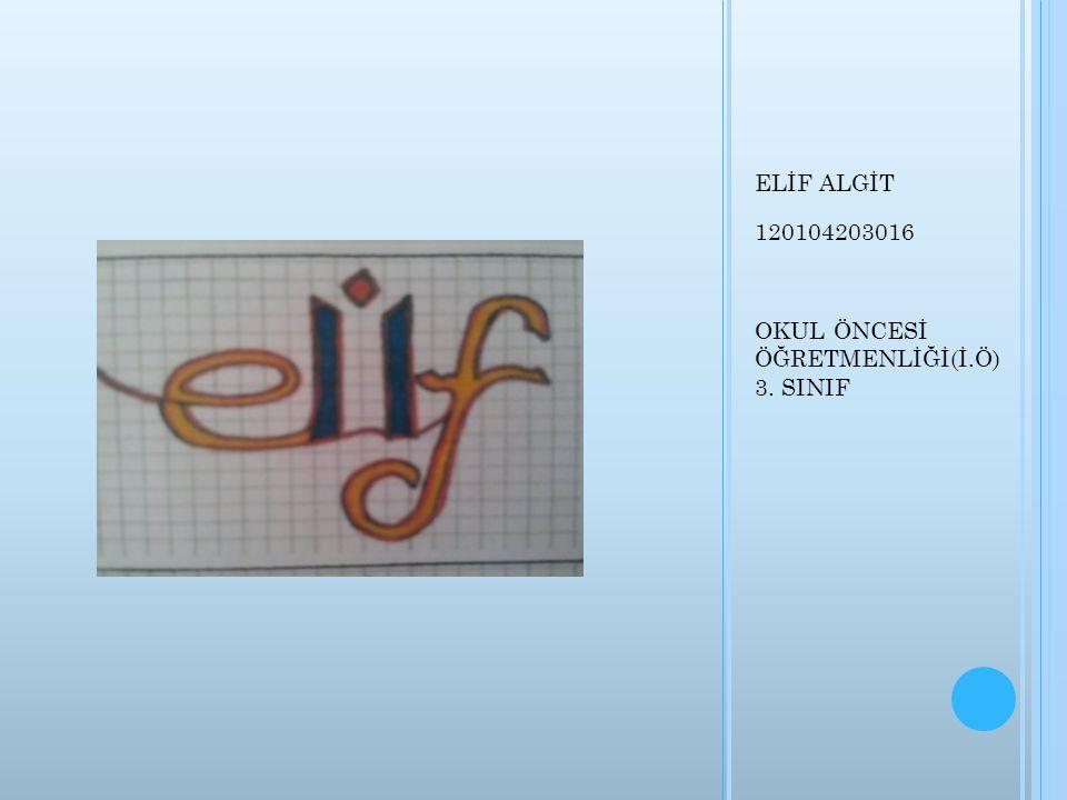 ELİF ALGİT 120104203016 OKUL ÖNCESİ ÖĞRETMENLİĞİ(İ.Ö) 3. SINIF