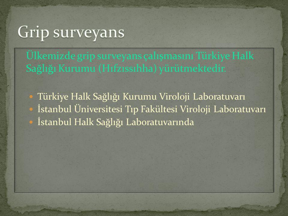 Ülkemizde grip surveyans çalışmasını Türkiye Halk Sağlığı Kurumu (Hıfzıssıhha) yürütmektedir. Türkiye Halk Sağlığı Kurumu Viroloji Laboratuvarı İstanb