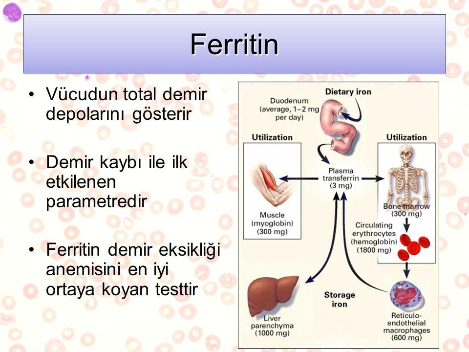 FerritinFerritin Vücudun total demir depolarını gösterir Demir kaybı ile ilk etkilenen parametredir Ferritin demir eksikliği anemisini en iyi ortaya k
