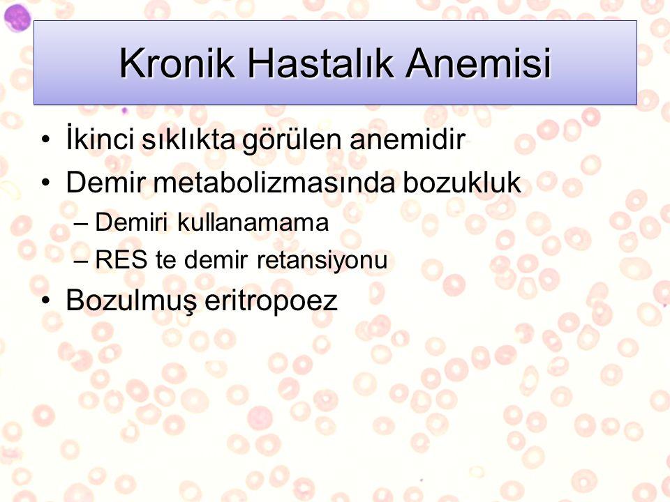 Kronik Hastalık Anemisi İkinci sıklıkta görülen anemidir Demir metabolizmasında bozukluk –Demiri kullanamama –RES te demir retansiyonu Bozulmuş eritro