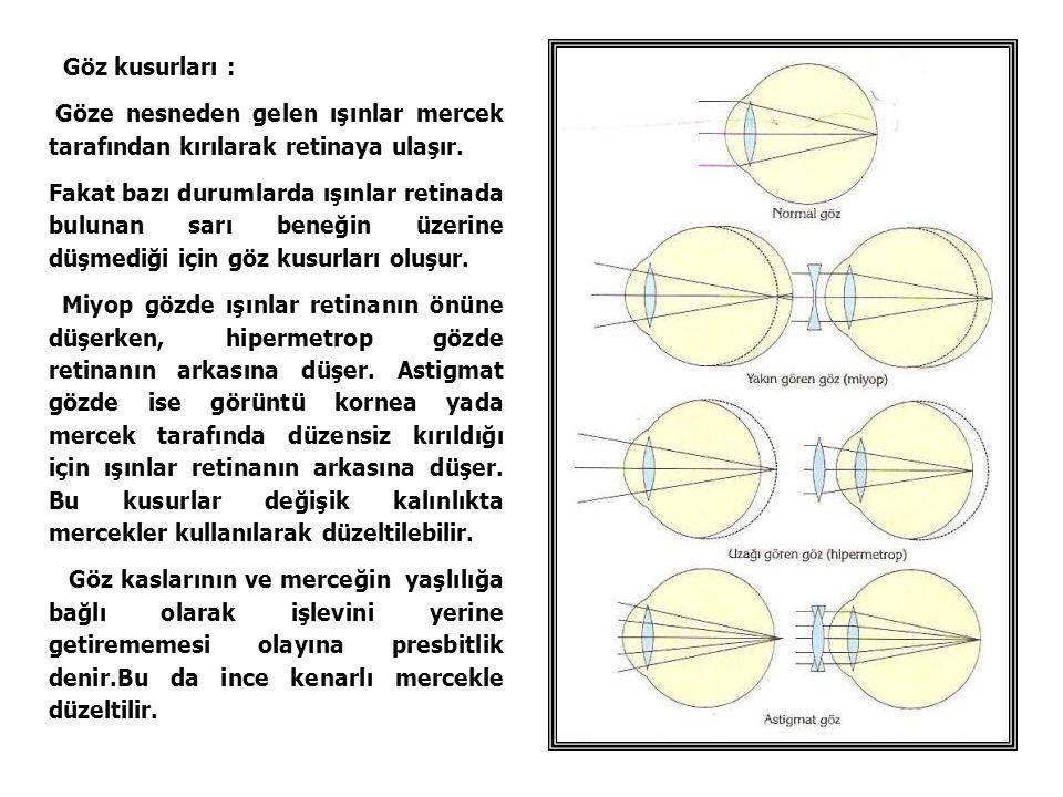 Göz kusurları : Göze nesneden gelen ışınlar mercek tarafından kırılarak retinaya ulaşır. Fakat bazı durumlarda ışınlar retinada bulunan sarı beneğin ü