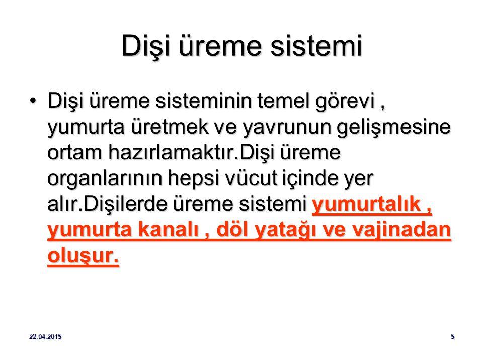BOŞALTIM SİSTEMİ HASTALIKLARI 3.