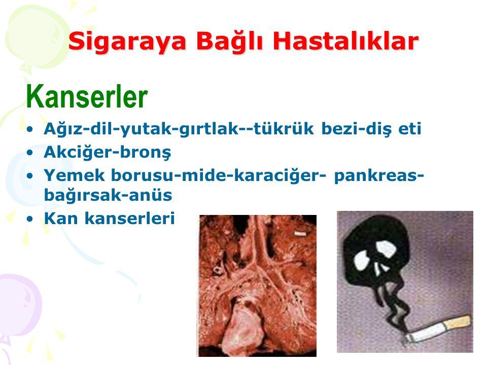 Sigaraya Bağlı Hastalıklar Kanserler Ağız-dil-yutak-gırtlak--tükrük bezi-diş eti Akciğer-bronş Yemek borusu-mide-karaciğer- pankreas- bağırsak-anüs Ka