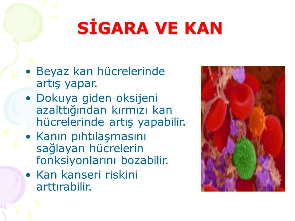 SİGARA VE KAN Beyaz kan hücrelerinde artış yapar. Dokuya giden oksijeni azalttığından kırmızı kan hücrelerinde artış yapabilir. Kanın pıhtılaşmasını s
