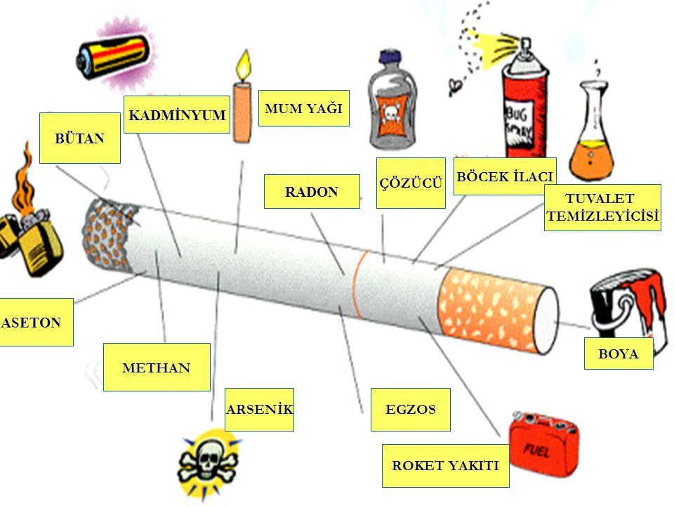 Ev içinde sigara içiliyorsa Ev içinde sigara içiliyorsa Çocuklar ortalama günde 5 sigara içmiş olmakta Bebekler hastaneye 3 kat daha fazla başvurmakta Ani bebek ölümü riski 2.5 kat artmakta Bebeklerde kolik tarzı karın ağrısı 2 kat artmakta Çocuklarda astım ve solunumsal enfeksiyon riski 2 kat artmakta Çocuklarda akciğer kanseri, kronik bronşit sıklığı artmakta Kocası sigara içen kadınlarda akciğer kanserinden ölüm 2-3 kat artmaktadır.