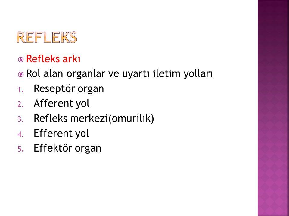  Refleks arkı  Rol alan organlar ve uyartı iletim yolları 1. Reseptör organ 2. Afferent yol 3. Refleks merkezi(omurilik) 4. Efferent yol 5. Effektör