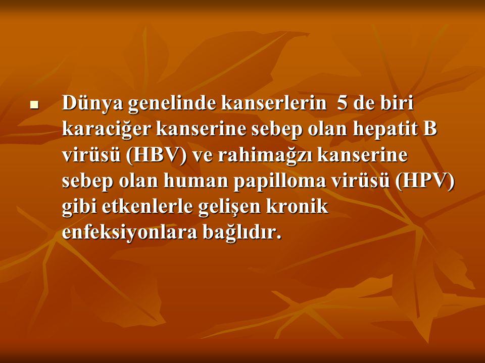 Dünya genelinde kanserlerin 5 de biri karaciğer kanserine sebep olan hepatit B virüsü (HBV) ve rahimağzı kanserine sebep olan human papilloma virüsü (