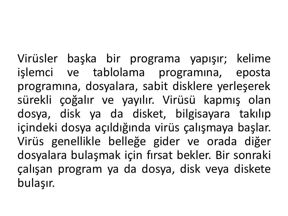 Virüsler başka bir programa yapışır; kelime işlemci ve tablolama programına, eposta programına, dosyalara, sabit disklere yerleşerek sürekli çoğalır v