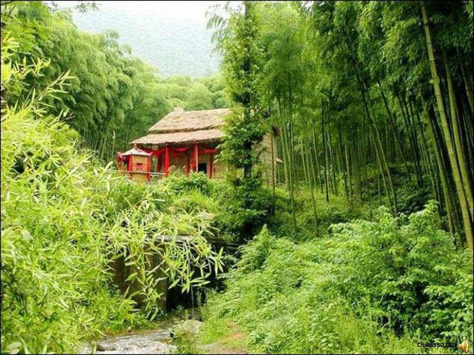 贵州民 宅 (Embedded image moved to file: pic04119.jpg) 貴州民宅