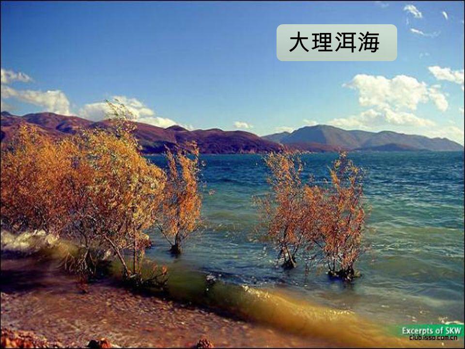 大理洱 海 (Embedded image moved to file: pic25690.jpg) 大理洱海