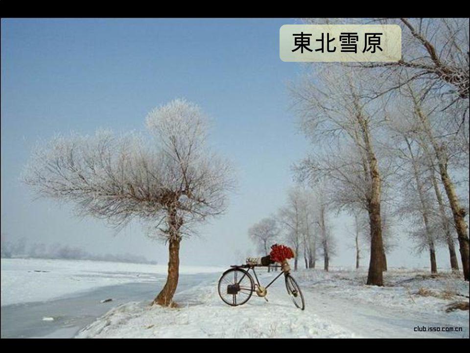 东北雪 原 (Embedded image moved to file: pic22274.jpg) 東北雪原