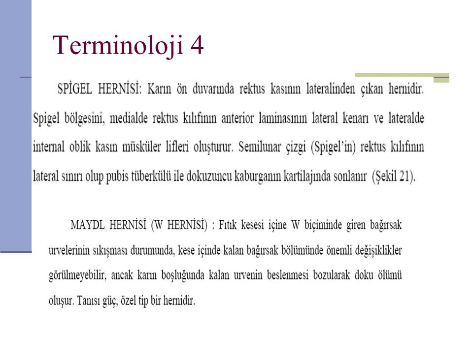Terminoloji 4