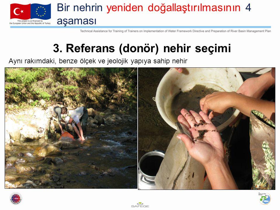 Bir nehrin yeniden doğallaştırılmasının 4 aşaması 4.