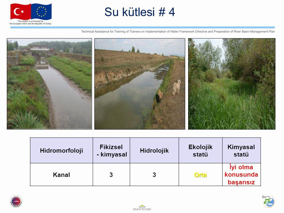 Hidromorfoloji Fikizsel - kimyasal Hidrolojik Ekolojik statü Kimyasal statü Kanal33Orta İyi olma konusunda başarısız Su kütlesi # 4