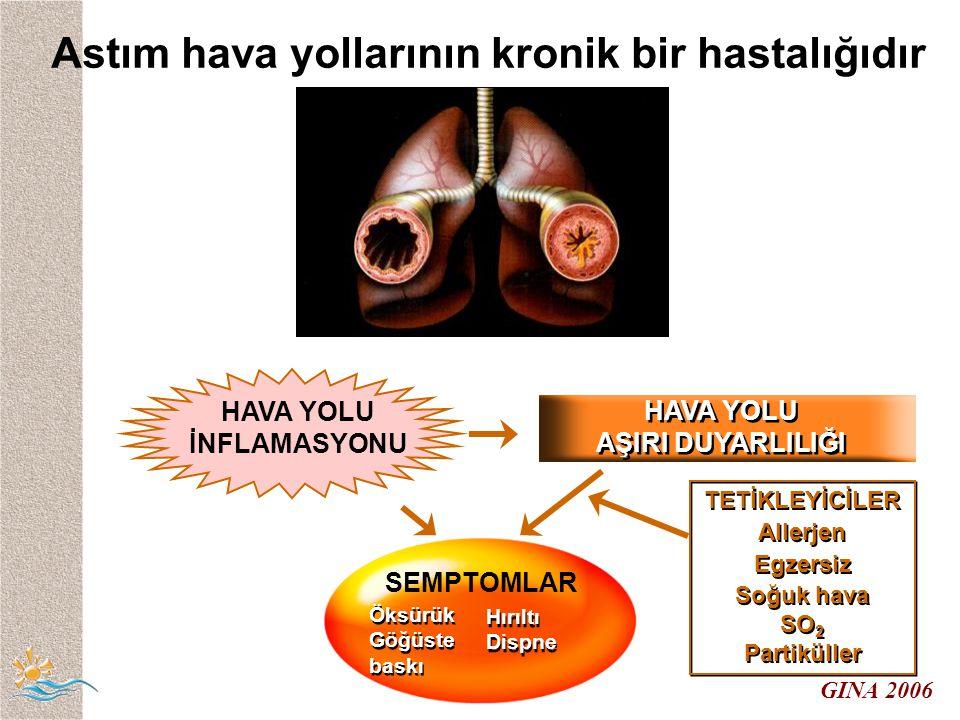 GINA 2006 Astım hava yollarının kronik bir hastalığıdır HAVA YOLU İNFLAMASYONU TETİKLEYİCİLER Allerjen Egzersiz Soğuk hava SO 2 Partiküller TETİKLEYİCİLER Allerjen Egzersiz Soğuk hava SO 2 Partiküller HAVA YOLU AŞIRI DUYARLILIĞI HAVA YOLU AŞIRI DUYARLILIĞI SEMPTOMLAR Öksürük Göğüste baskı Öksürük Göğüste baskı Hırıltı Dispne Hırıltı Dispne