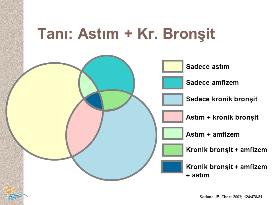 Sadece astım Sadece amfizem Sadece kronik bronşit Astım + kronik bronşit Astım + amfizem Kronik bronşit + amfizem Kronik bronşit + amfizem + astım Soriano JB.