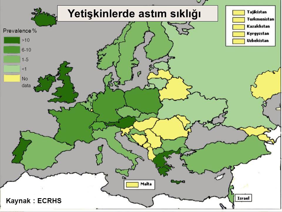 Prevalence % >10 6-10 1-5 <1 No data Kaynak : ECRHS Yetişkinlerde astım sıklığı