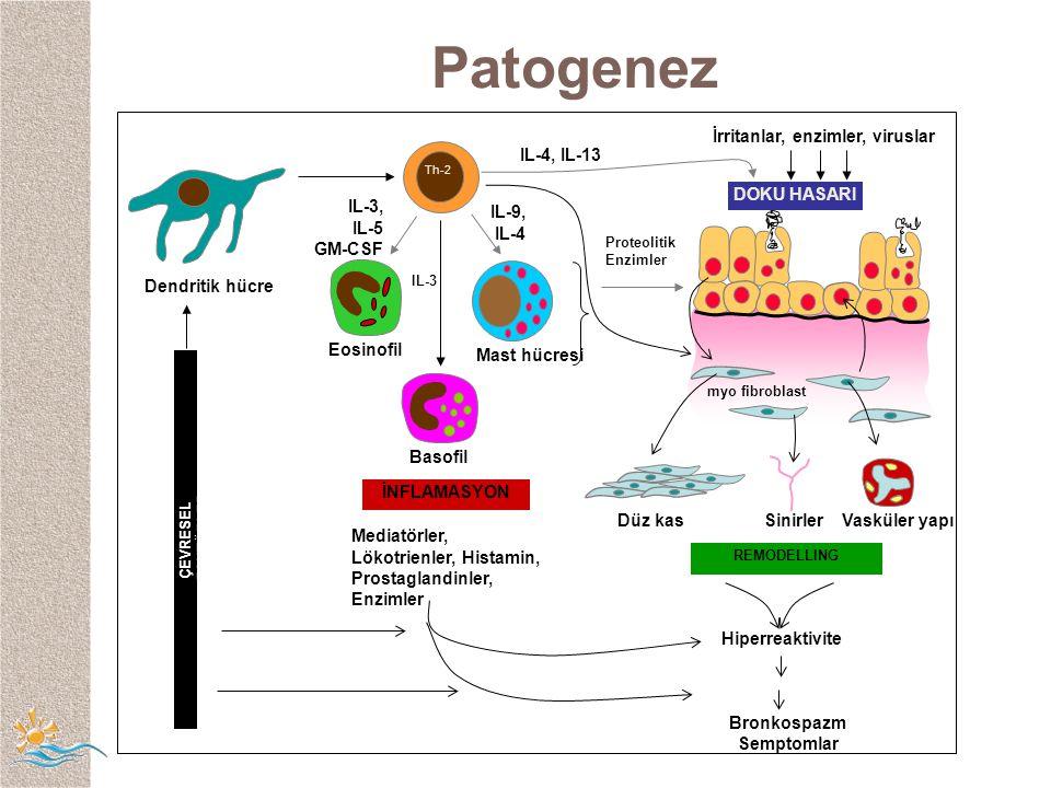  2 -a  2 -agonistlerin yeni sınıflaması inhale formoterol EtkiBaşlama hızı hızı Etki süresi Hızlı Yavaş Uzun Kısa İnhale terbutaline İnhale salbutamol oral terbutaline oral salbutamol oral formoterol inhale salmeterol