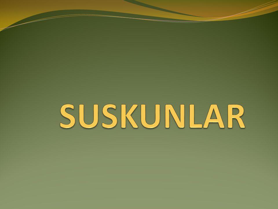 My favarite series is 'Suskunlar'.
