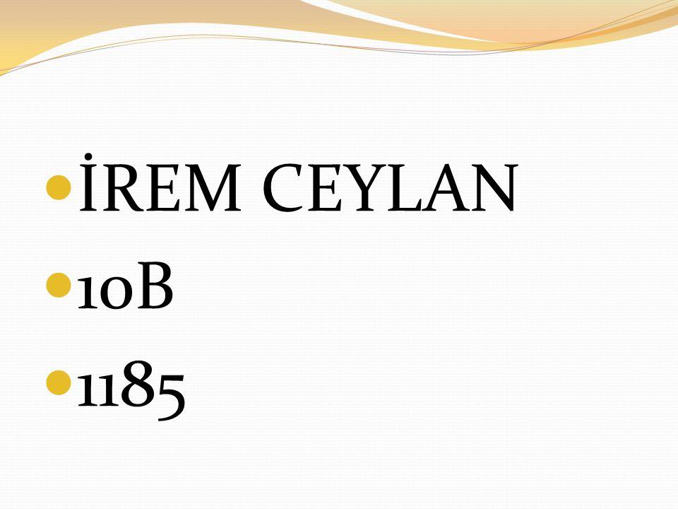 İREM CEYLAN 10B 1185