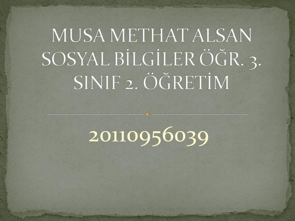20110956039