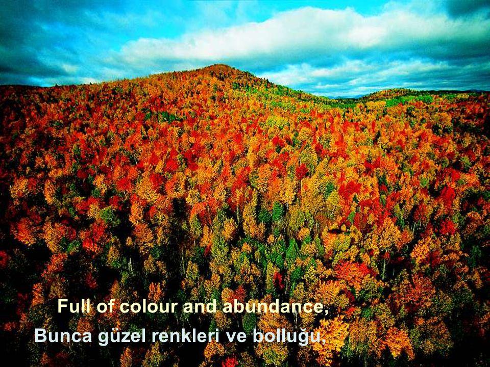 Full of colour and abundance, Bunca güzel renkleri ve bolluğu,