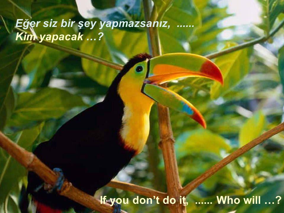 If you don't do it,...... Who will …? Eğer siz bir şey yapmazsanız,...... Kim yapacak …?