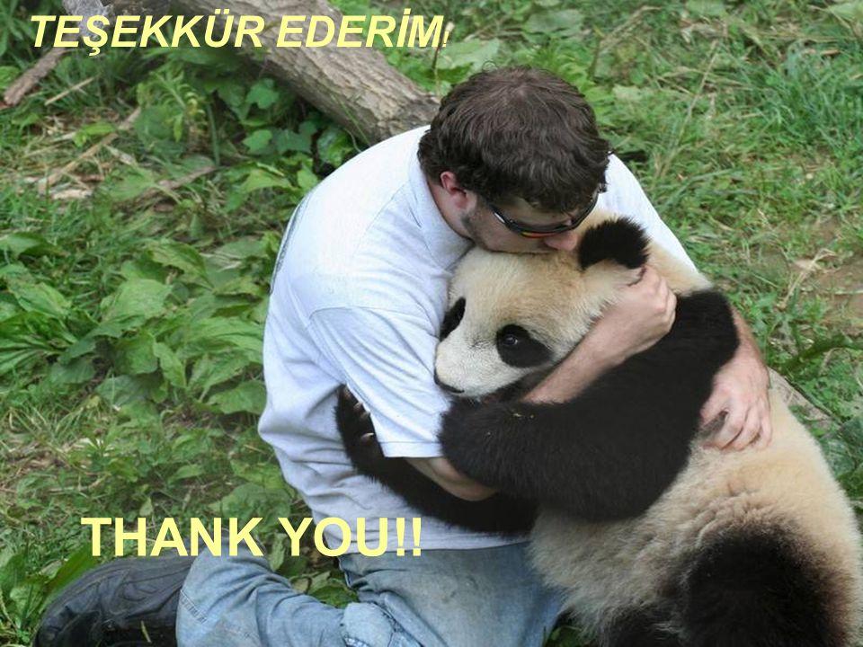 THANK YOU!! TEŞEKKÜR EDERİM !