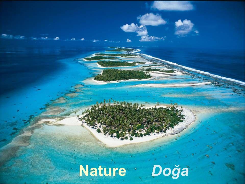 Nature Doğa