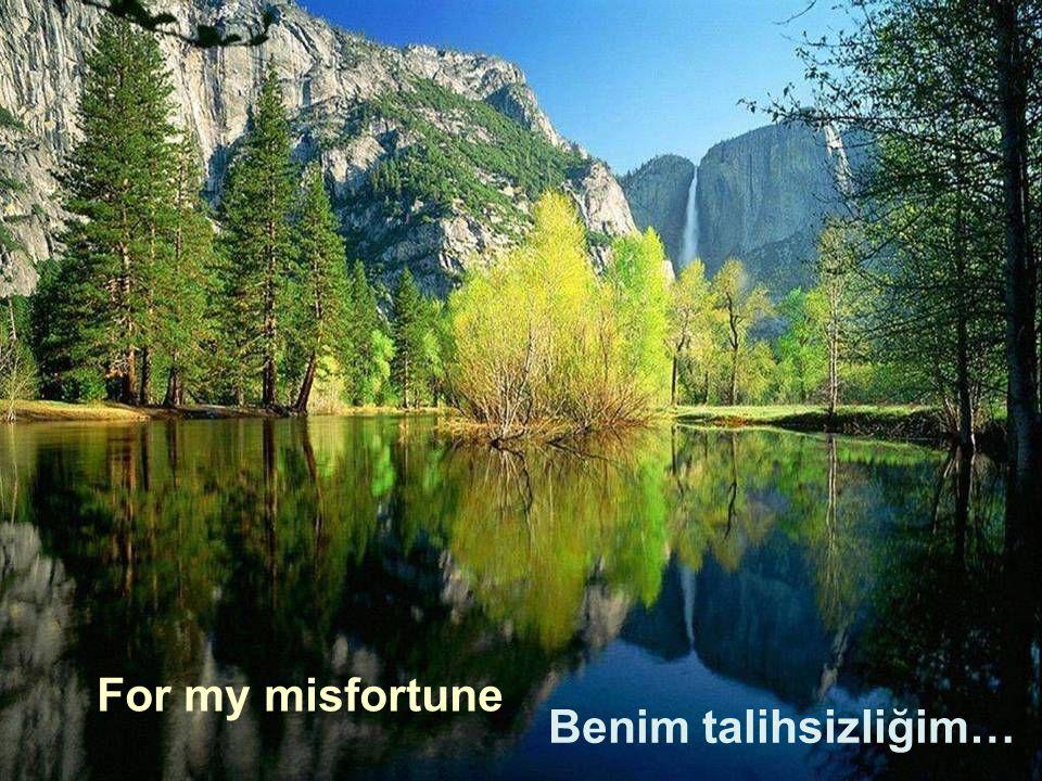 For my misfortune Benim talihsizliğim…