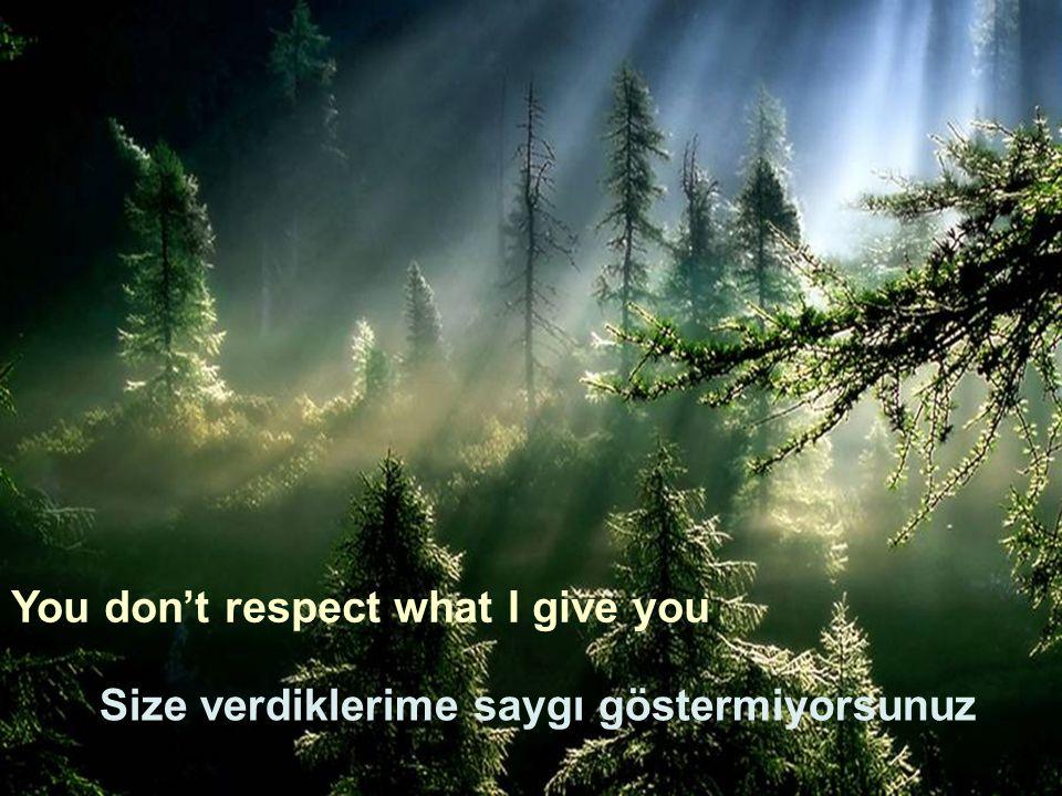 You don't respect what I give you Size verdiklerime saygı göstermiyorsunuz