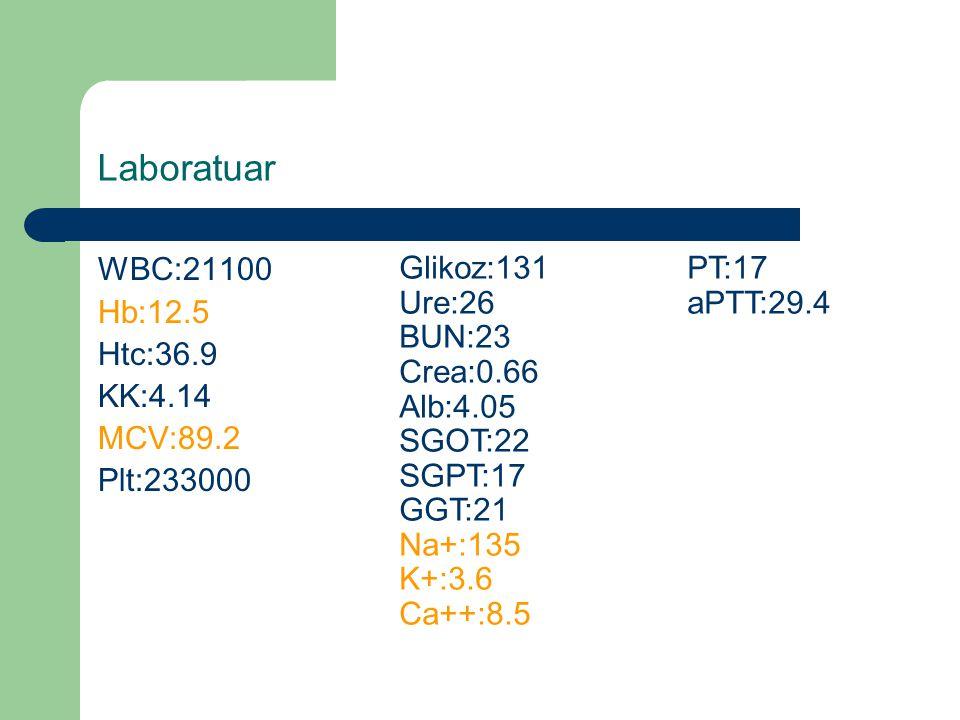 Laboratuar WBC:21100 Hb:12.5 Htc:36.9 KK:4.14 MCV:89.2 Plt:233000 Glikoz:131PT:17 Ure:26aPTT:29.4 BUN:23 Crea:0.66 Alb:4.05 SGOT:22 SGPT:17 GGT:21 Na+