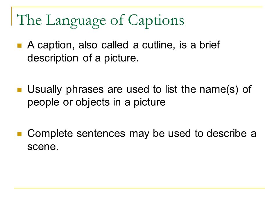 The Language of Captions A caption, also called a cutline, is a brief description of a picture.