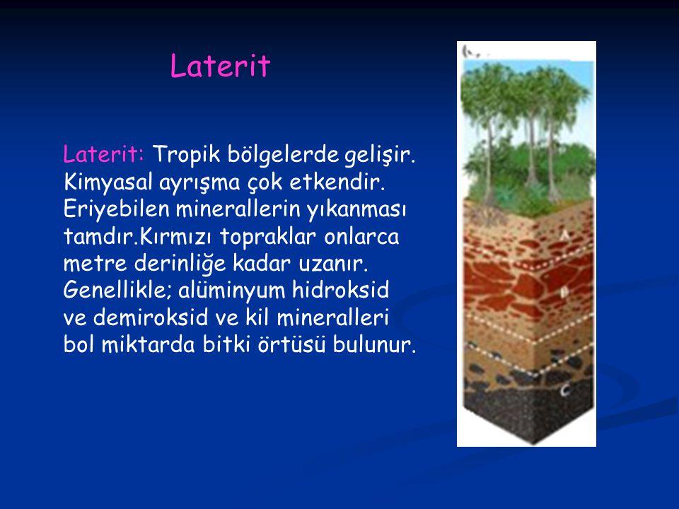 Laterit: Tropik bölgelerde gelişir.Kimyasal ayrışma çok etkendir.