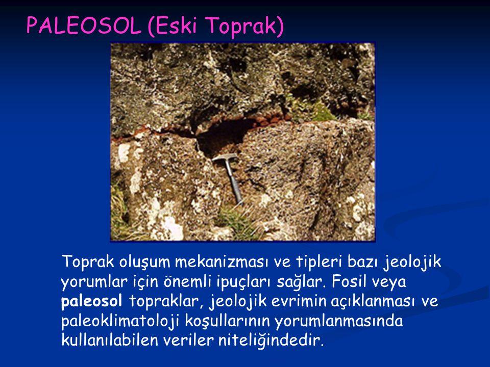 PALEOSOL (Eski Toprak) Toprak oluşum mekanizması ve tipleri bazı jeolojik yorumlar için önemli ipuçları sağlar.