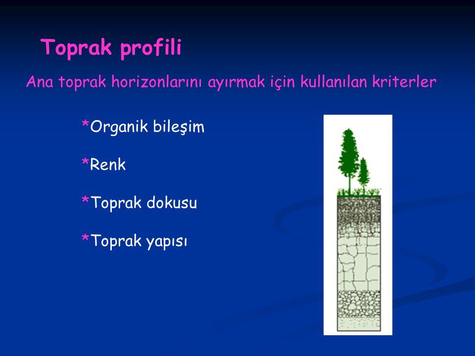Toprak profili Ana toprak horizonlarını ayırmak için kullanılan kriterler *Organik bileşim *Renk *Toprak dokusu *Toprak yapısı