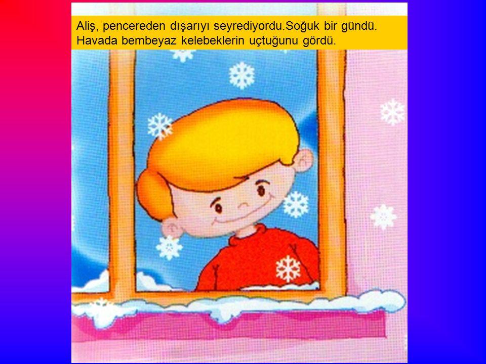 Aliş, pencereden dışarıyı seyrediyordu.Soğuk bir gündü. Havada bembeyaz kelebeklerin uçtuğunu gördü.