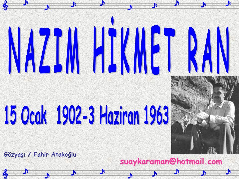 suaykaraman@hotmail.com