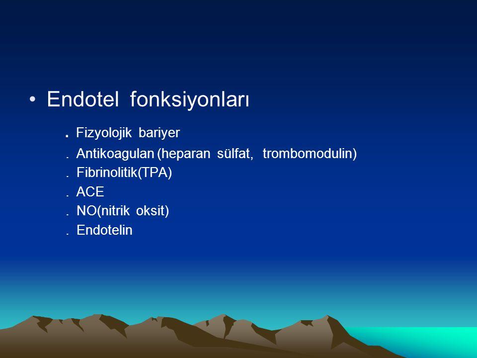 Endotel fonksiyonları. Fizyolojik bariyer. Antikoagulan (heparan sülfat, trombomodulin). Fibrinolitik(TPA). ACE. NO(nitrik oksit). Endotelin