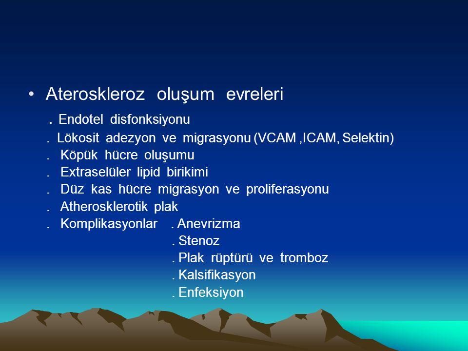 Ateroskleroz oluşum evreleri. Endotel disfonksiyonu. Lökosit adezyon ve migrasyonu (VCAM,ICAM, Selektin). Köpük hücre oluşumu. Extraselüler lipid biri