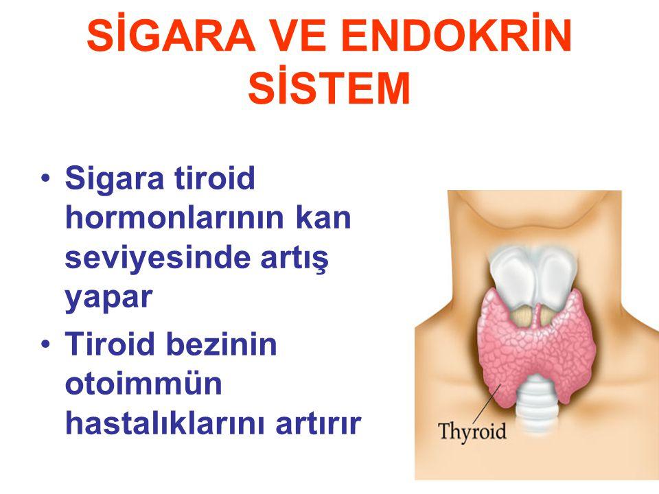 SİGARA VE ENDOKRİN SİSTEM Sigara tiroid hormonlarının kan seviyesinde artış yapar Tiroid bezinin otoimmün hastalıklarını artırır
